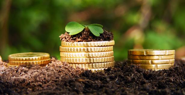 Der neue Trend: Nachhaltige Geldanlagen